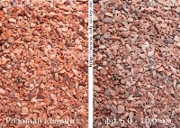 РОЗОВЫЙ КВАРЦИТ. Фото увлажненного и сухого розового кварцита. Розовая кварцитная крошка, декоративный кварцитный щебень розового цвета фракции 5-10 мм